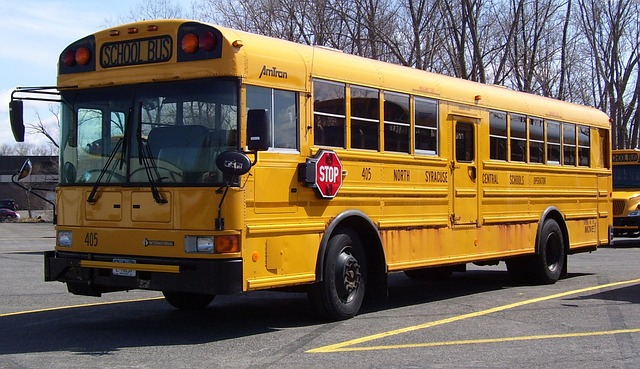 school-bus-citiford